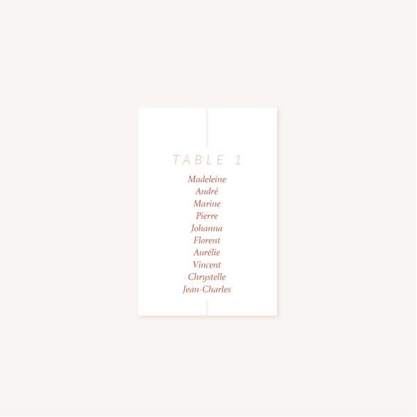 Plan de table mariage Terracotta brique blush