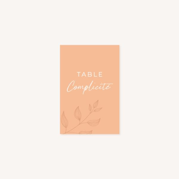 Nom de table mariage terre de sienne terracotta marron nature boheme beige or