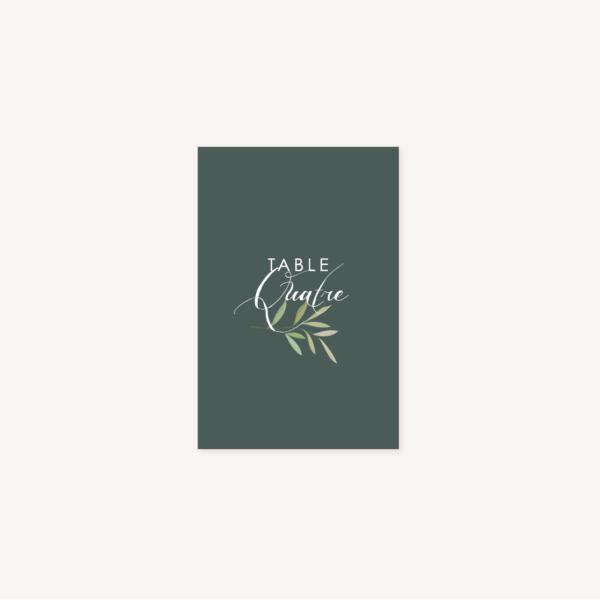 Nom de table vert foncé mariage végétal feuille eucalyptus
